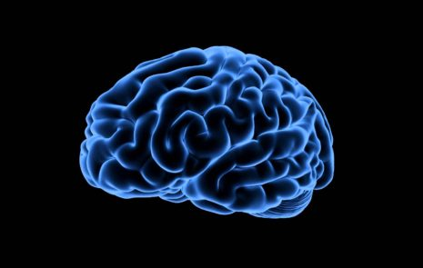 Brain - Unlock your hidden storytelling powers