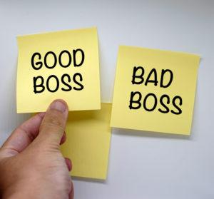 find a good boss